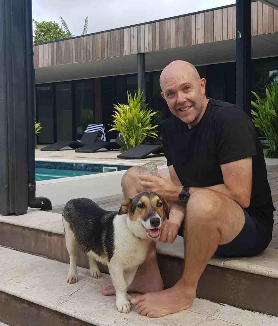 Rarotonga dogs